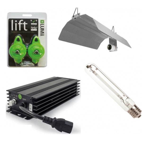 600w HPS Digital Grow Light Kit